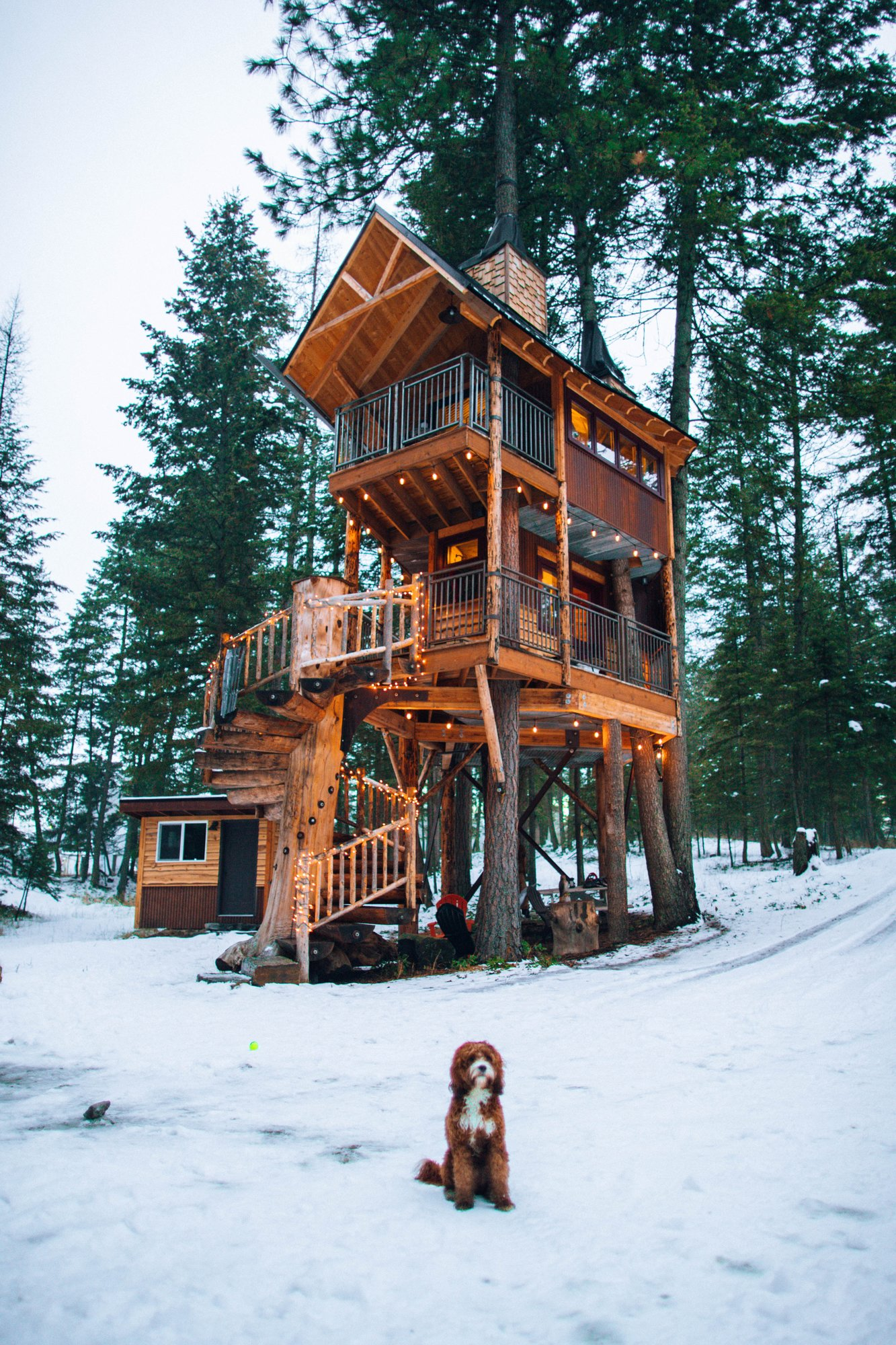 The Coolest Treehouses Available for Rent on Airbnb